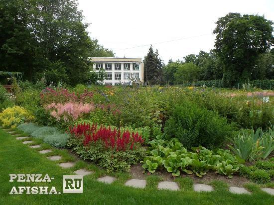 Фото - Ботанический сад им. И.И. Спрыгина